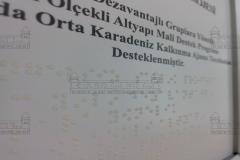 braille_ve_latin_alfabeli_asansor_ici_kat_planlari010
